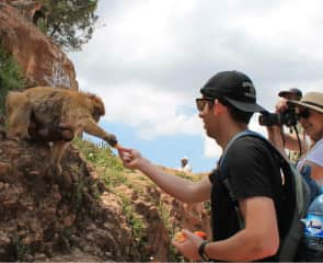 Kevin in Morocco with monkey friends