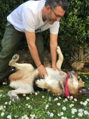 Marco and Yuba playing in the garden