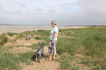 Walking with the schnauzers