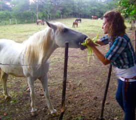 We offer Care for all of your Animals. Nicaragua