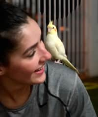 Erica making friends with her cousin's bird.