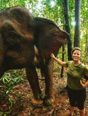 That one time in Cambodia at the elephant sanctuary!
