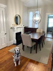 Archer in the dining room