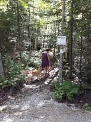 Abby and I take a walk