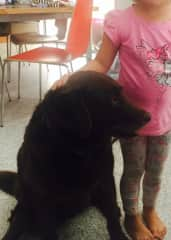 Daughter Georgie with our 12 year old labradoodle Delta