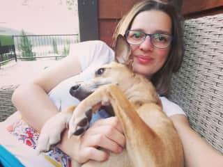Klara dogsitting neighbours dog Phoebe