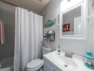 Guest bathroom (yours!)