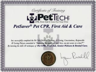 Certified completion of pet first aid course. Plus numerous classes in dog training.