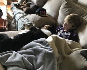 Nico snuggling on the couch with Molly, one of our part-time furbabies when her mom is away.