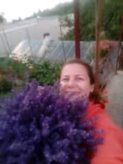 My lavender harvest from our garden.