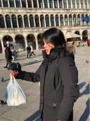 Pigeon in Venice while traveling!