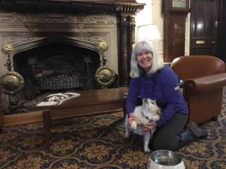 Impeccably behaved Fleure (housesit #3) at Dumbleton Hall Hotel