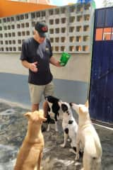 David playing with rescue dogs in Mexico