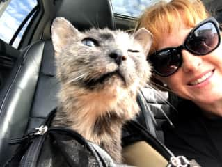 Me taking sweet granny Hampton for her vet appointment SF. Such a love bug.