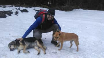 Assi with two of the four dogs in the Black Forest