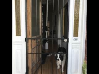 Security door especially designed for Madam