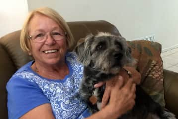 It was a mutual love fest between Sarge and one of our wonderful Housesitters, Kathleen.