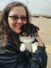 This is Churro, my daughter's new puppy. I drove to Texas to pick him up and bring him home.