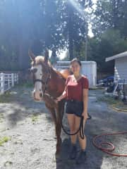 A friend's horse that I took walking a few times. His name is Harley :)