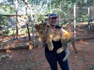April 2017 - South Africa. Lion cub.