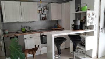 Kitchen with Vida....