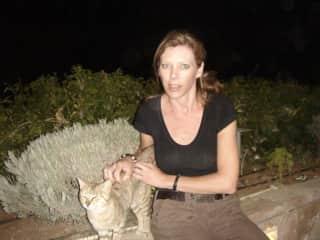 Feeding cats in Jordan