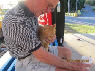 John with a friendly feral in St. Thomas, VI