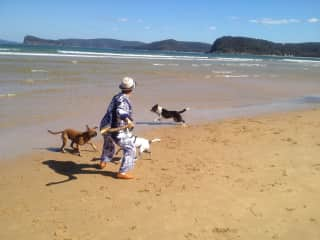 Banksy and Radar with new friend on beach