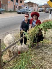 Love this local lady and her Alpaca seen on our way to Ollantaytambo Peru