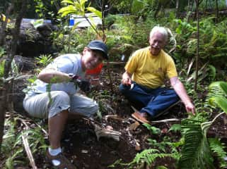 We love to garden even on vacation.  Every two years we go to Kauai and volunteer in Lumahuli Gardens while there.
