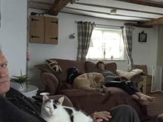 Sitting in Marbury...5 pets.