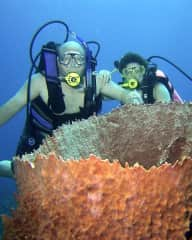 Diving near our house on Little Cayman