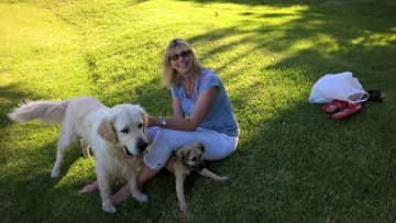 With Churchill and Silver at Groot Constantia Estate, Cape Town