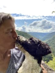 My passions...dogs, hiking, playing, laughing, dogs!