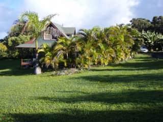 This is where Milo, Otis and myself lived on Maui.