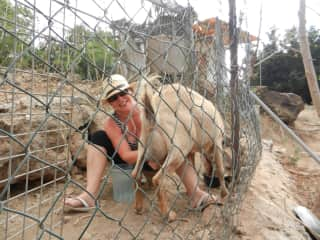 Two weeks in Spain with goats that I milked every day