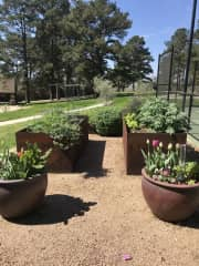I am an avid gardener, just a small portion of what we maintain.