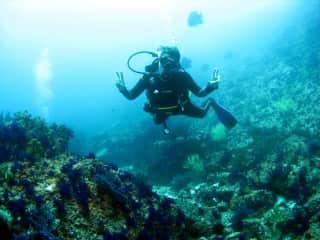 I like sea and I'm a scuba diver