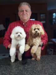 My hubby and senior pups.