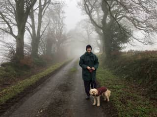 A wintery walk with Dexter in the Somerset countryside