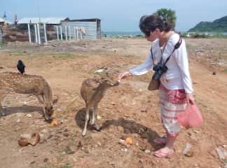 Me and deers in Sri Lanka