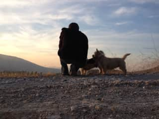 A rare moment when the daily walk in Turkey didn't involve 3-4 local dogs tagging along.