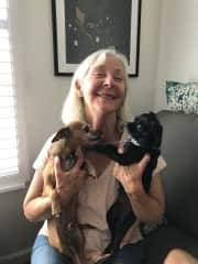 Yikes! I've just been licked (dog kisses really) by my grand dogs, Uno and Poncho (Deer face and Apple face Chihuahuas)!!