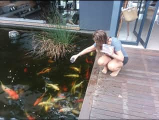 Feeding my koi