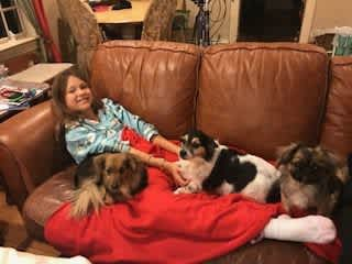 Olivia and our doggies watching one of our favorite shows AMAZING RACE as we see families/friends race all over the world!
