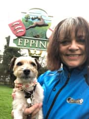 Terri house and dog sitting in Epping, U.K. (December 2017 - January 2018)