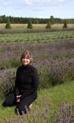 Lavender fields forever....