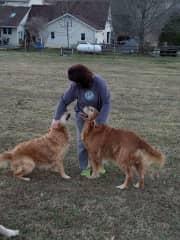 L to R Sophie, Stephanie, and Tucker @ Willough Penta Farm