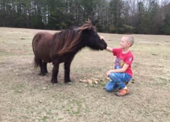 Matt with Midnight, one of my Aunt's many horses