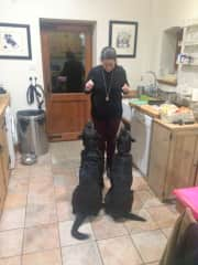 Treat time for Gozi and Mungo (Kent, England Nov 2016) while their owners went to Mexico for a two week holiday.